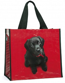 Сумка Catseye London Black Lab on Red